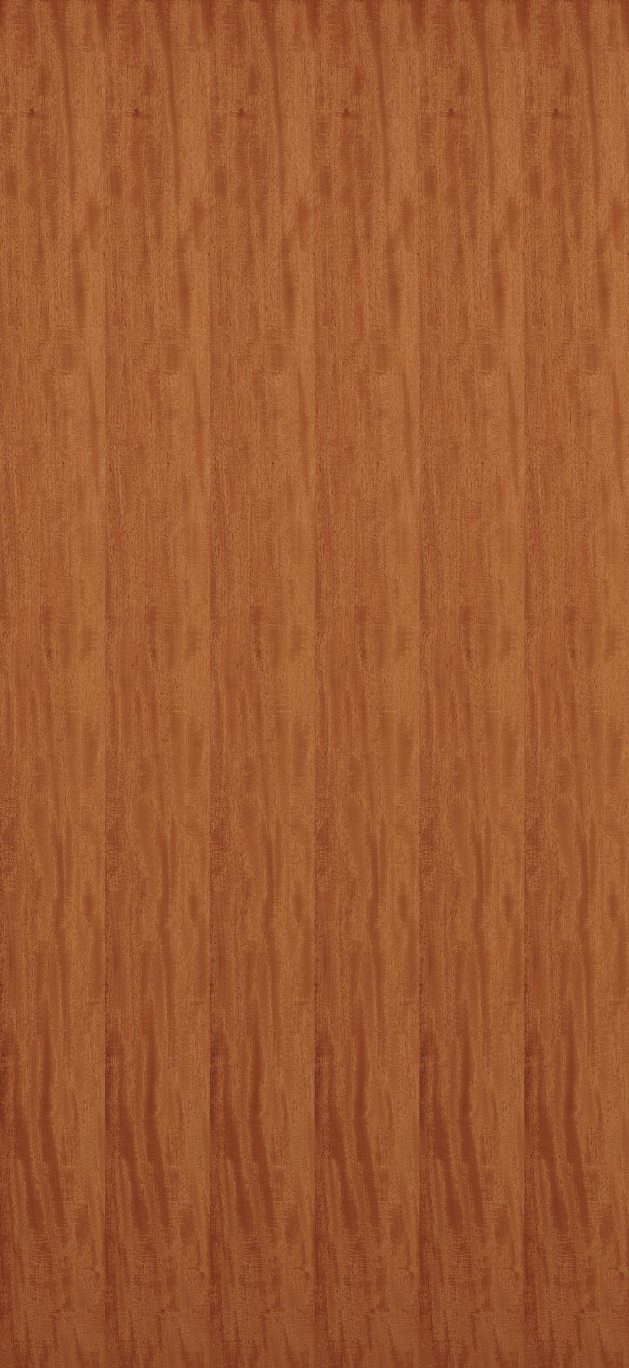 Mahogany South American Veneer Dooge Veneers