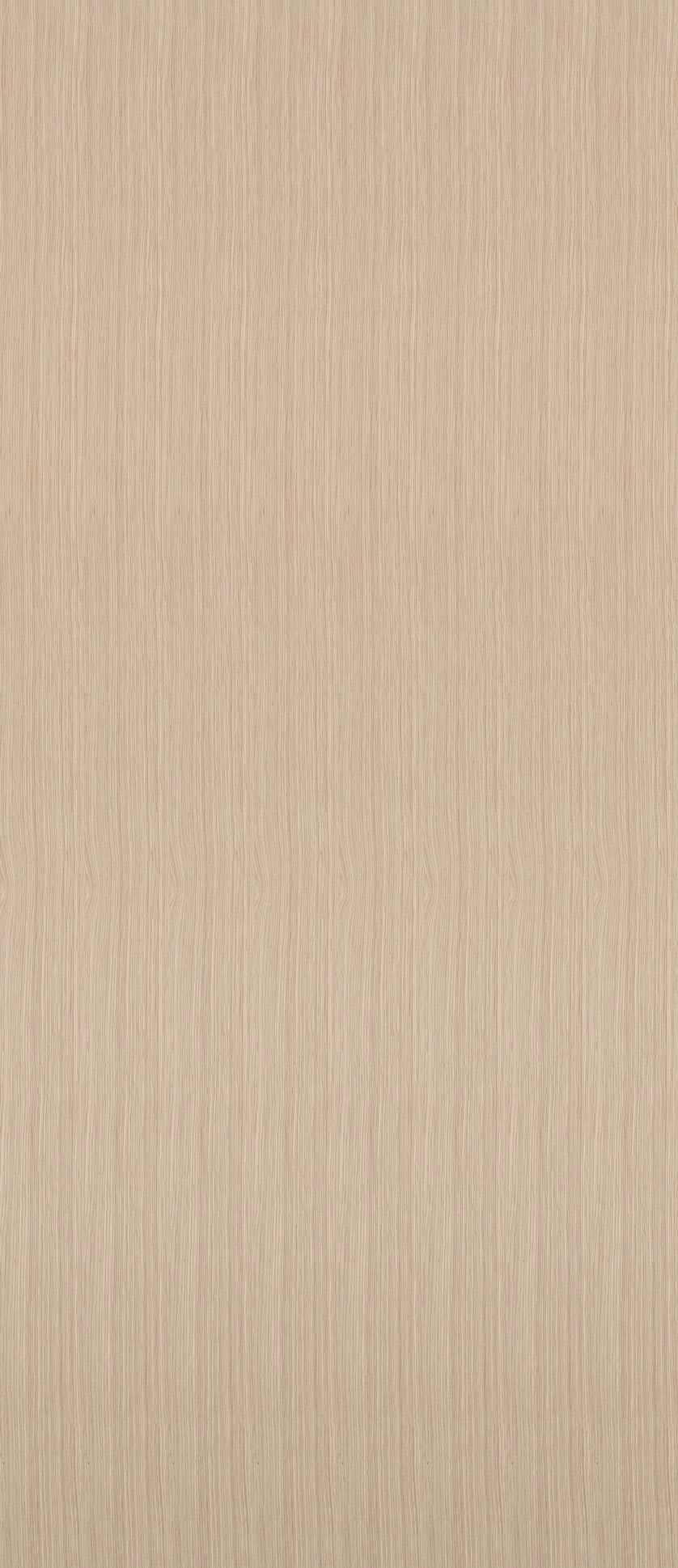 Oak American White Wood Veneer Dooge Veneers
