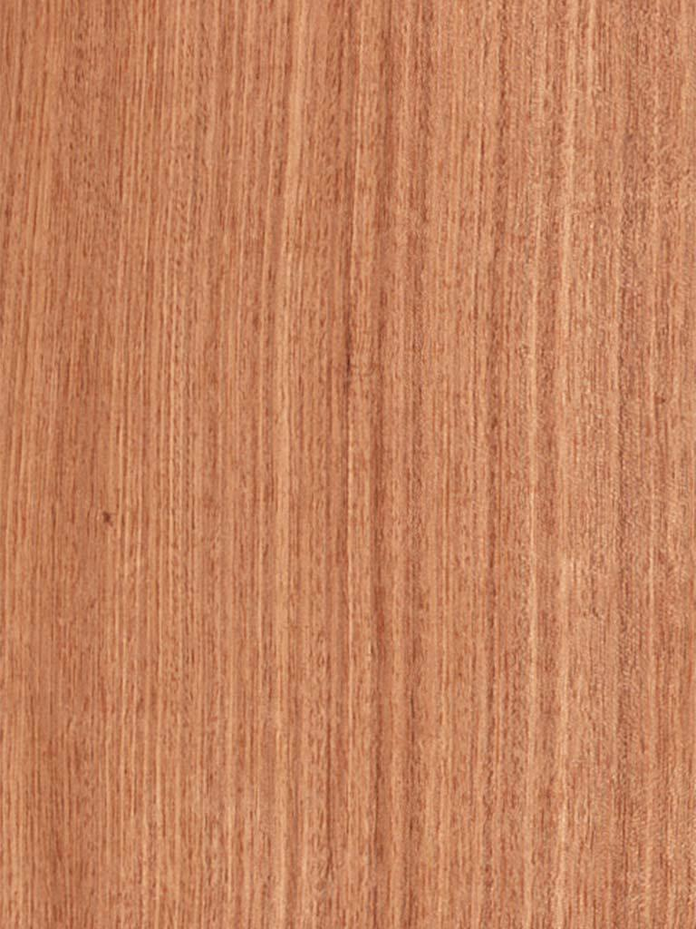 Quartered Plain Etimoe Veneer