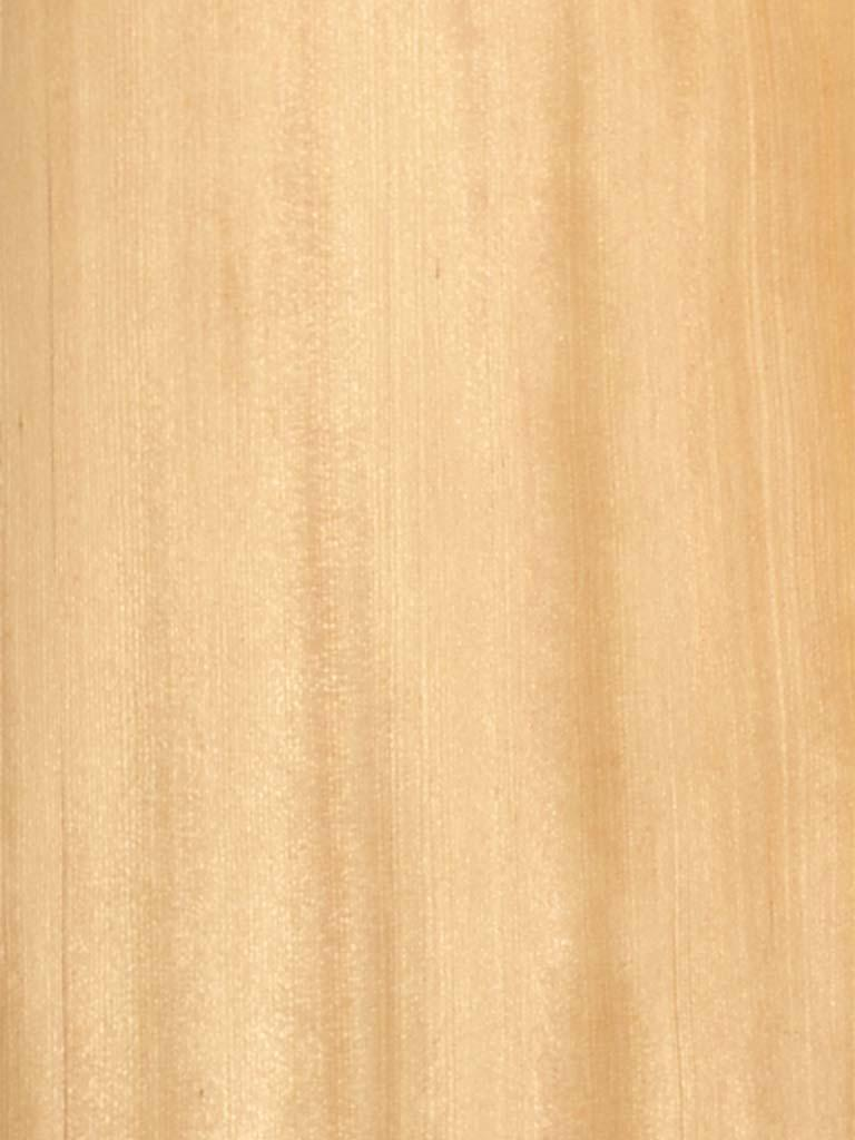 Quartered Hemlock Wood Veneer