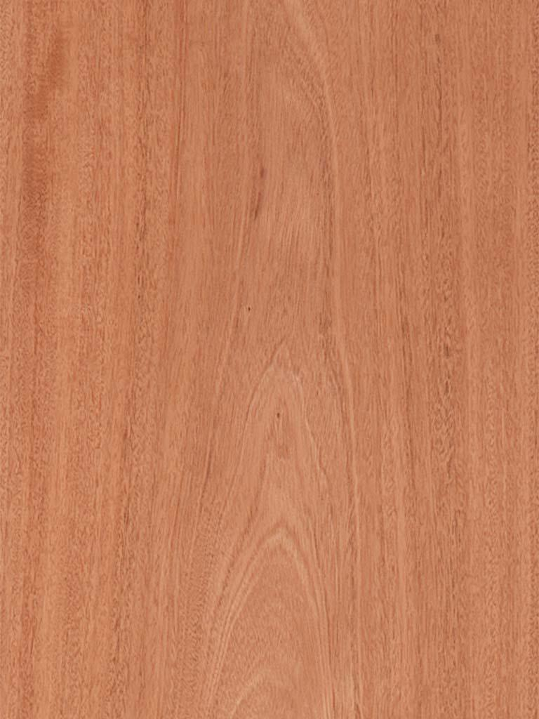 Flat Cut South American Mahogany Veneer