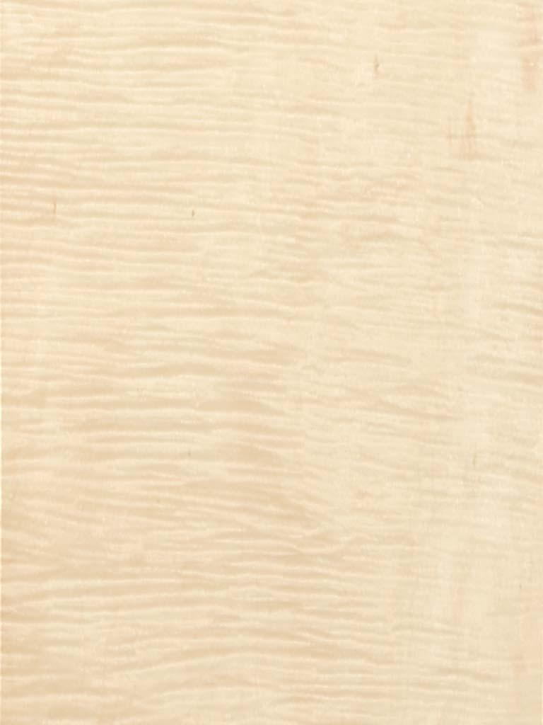Curly Maple Wood Veneer
