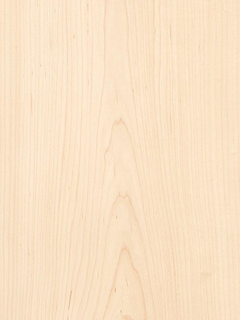 Maple Flat Cut Plain Veneer