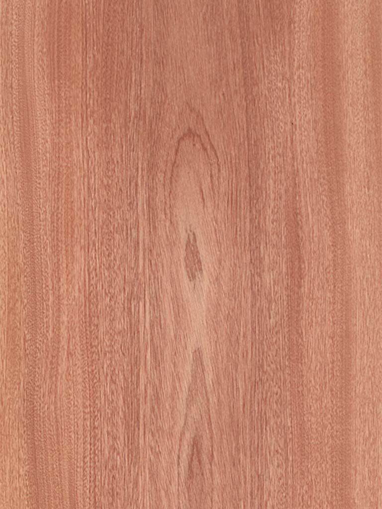 Sapele Flat Cut Plain Veneer