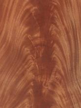 African Mahogany Crotch Veneer