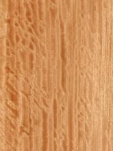Quartered Figured Bosse Veneer