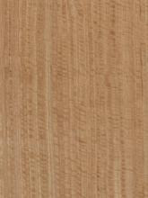 Quartered Figured Eucalyptus Bee's Wing Veneer
