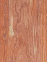 Padauk Flat Cut Wood Veneer