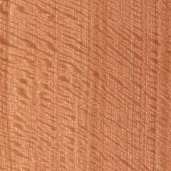 Sapele Qtd Fig